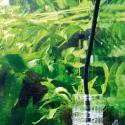 JBL ProFlora T3 BLACK (CO2-Schlauch 3m) *